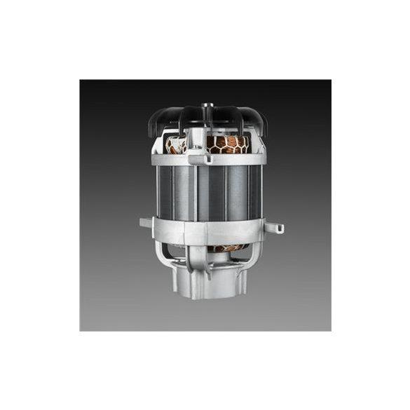 Indukciós motor
